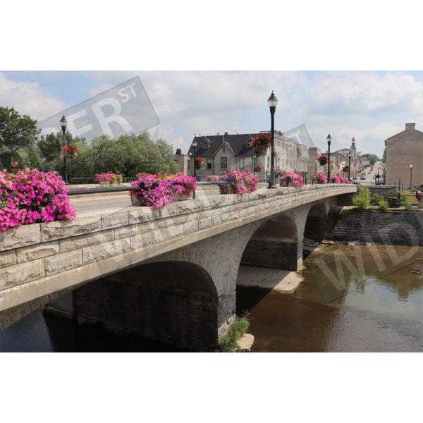 Queen Street Bridge in Bloom Thumb