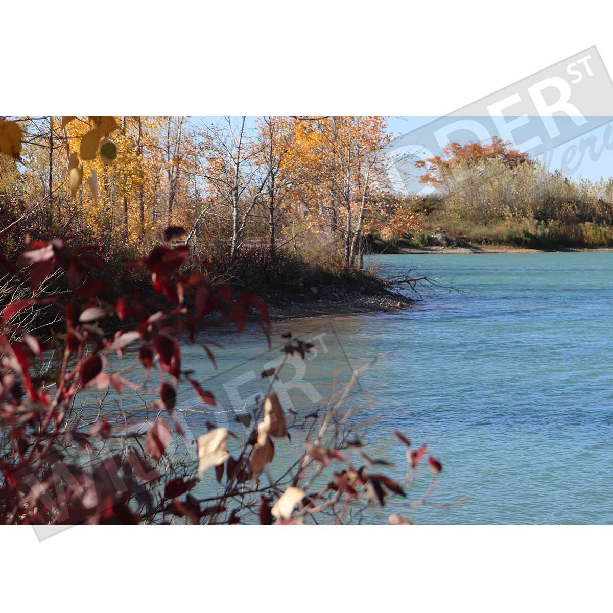 Fall Shore